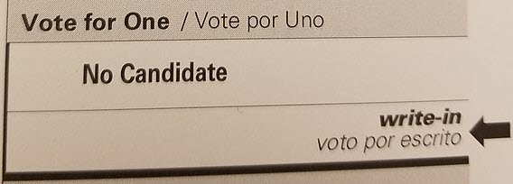 A Write-In Candidate Can Win!