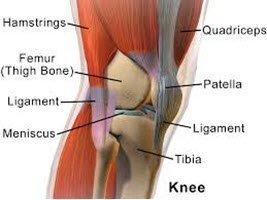 Healing the Knees